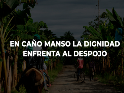 Caño Manso
